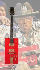 bo-diddley Twang Machine